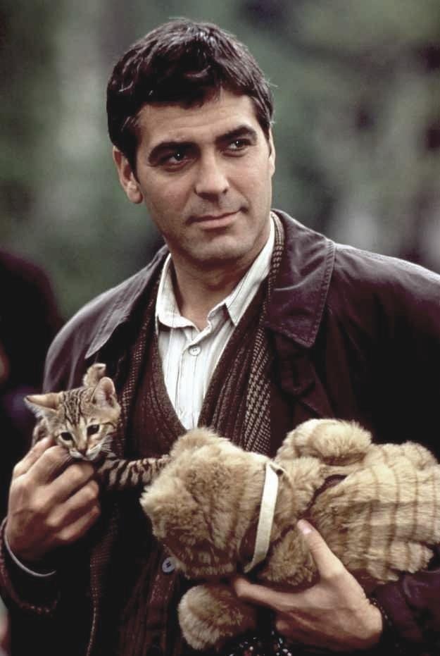 Джордж Клуни жизнь, коты, селебрити