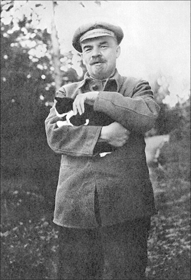 Владимир Ильич жизнь, коты, селебрити