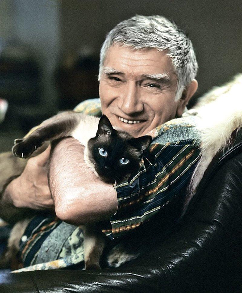 Армен Джигарханян жизнь, коты, селебрити