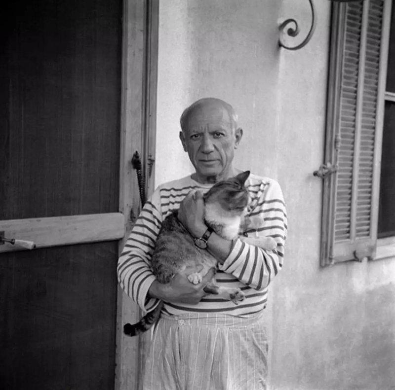 Пабло Пикассо жизнь, коты, селебрити