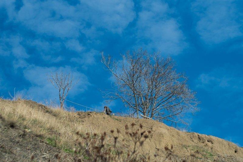 Новогодний трип в Крым.  Прибытие в Ялту крым, отдых, россия
