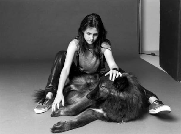 Кристен Стюарт - волки домашние животные, домашние любимцы звезд, звезды, знаменитости, мое зверье, необычно, оригинально, питомцы