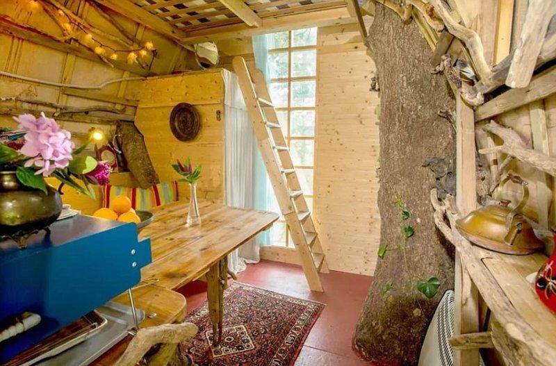 """Гостевой дом Tree Sparrow House в Корнуолле - вместительная гостиная/кухня и """"второй этаж"""" с большой кроватью, куда ведет лесенка Airbnb, аренда, аренда жилья, великобритания, необычное жилье, необычные дома, путешествия, туризм"""