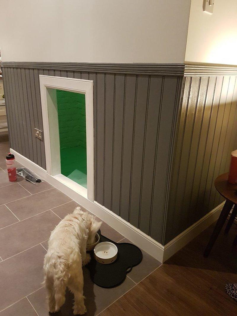 Молли терпеливо ждала завершения работ идея, интерьер, комната, лестница, своими руками, собака, строительство