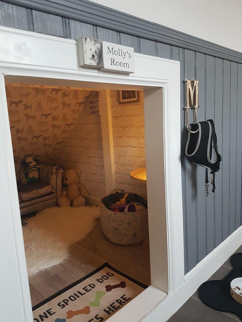 Вид на комнату снаружи идея, интерьер, комната, лестница, своими руками, собака, строительство