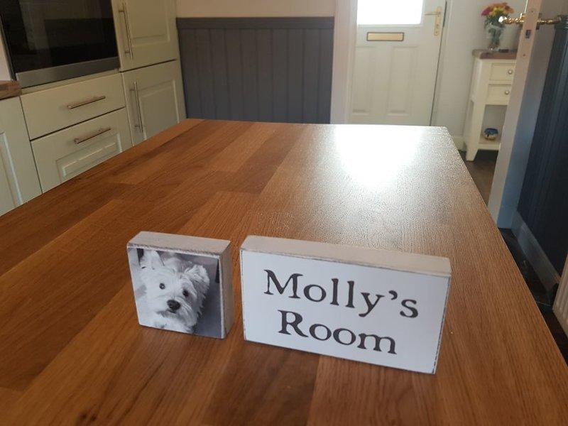 """Комната Молли"" идея, интерьер, комната, лестница, своими руками, собака, строительство"
