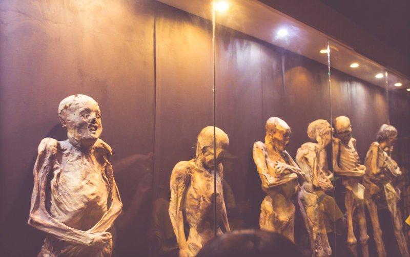 Подольская пенсионерка 9 лет жила с двумя мумиями ynews, Подольск, мумии, новости, пенсионерка, психиатрическая больница