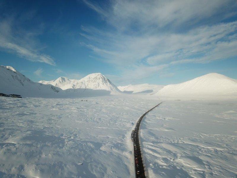 Дорога через снежное царство день, животные, кадр, люди, мир, снимок, фото, фотоподборка