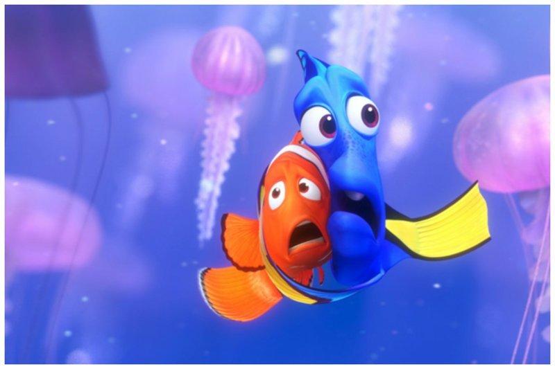 В присутствии товарищей рыбам легче переживать страх и тревогу интересно, мир, природа, удивительное, факты