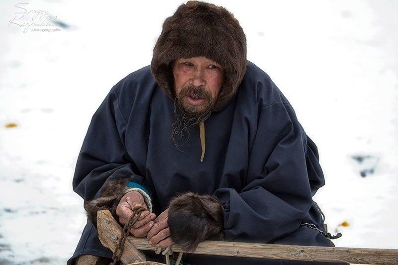 Полярный Урал. Жизнь ненецких оленеводов путешествия, факты, фото