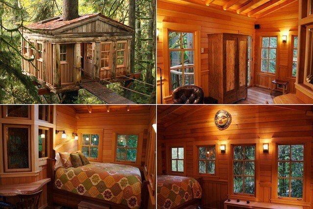 Мечта с детства - дома на деревьях деревья, дом, дома на дереве, интерьер и декор, мечта, сказочный дом, чудо