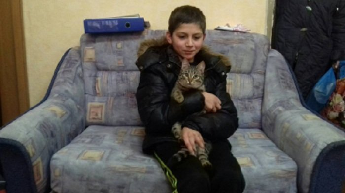 Пропавшему школьнику не дал замерзнуть бродячий кот ynews, волонтеры, кот, поиски детей, полиция, спасение