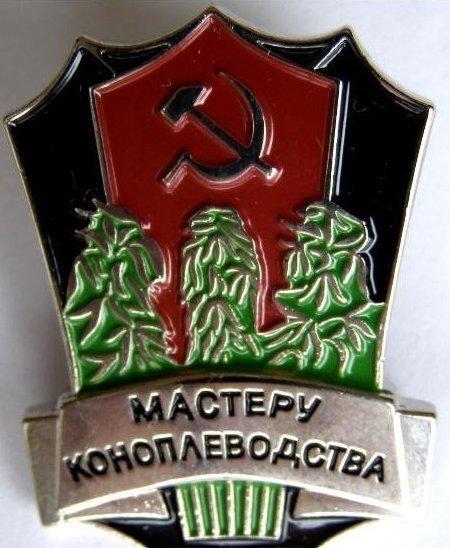 Плантация марихуаны, принадлежащая гражданину РФ, обнаружена на Кировоградщине, - СБУ - Цензор.НЕТ 1274