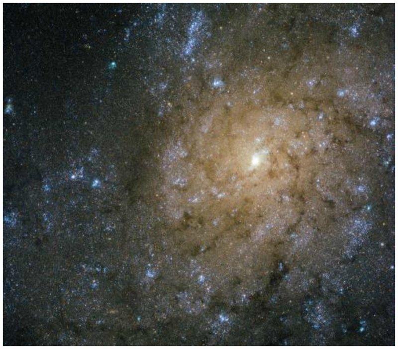 NGC 7793, спиральная галактика в созвездии Скульптор, которое находится примерно 13 миллионов световых лет от Земли. интересное, космос, красота, наука, фото