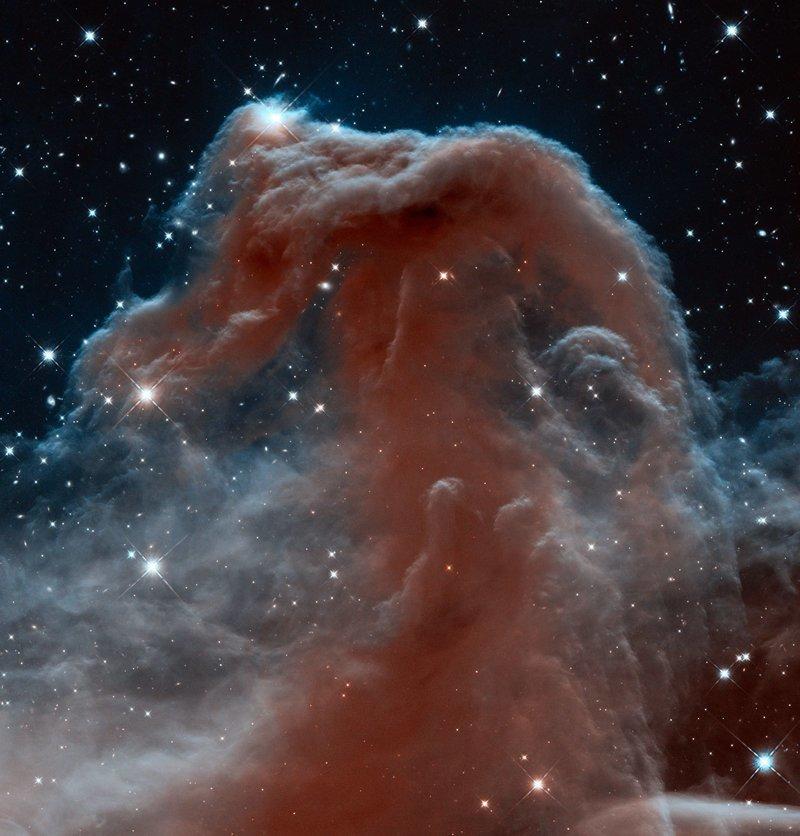 Туманность Конская голова интересное, космос, красота, наука, фото