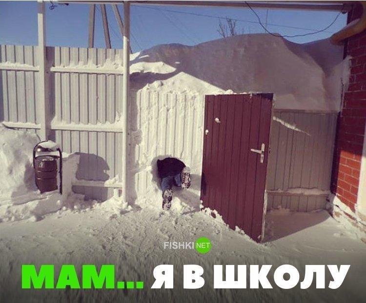 Тем временем, Собянин объявил свободный режим посещения школ в связи с непогодой зима, казань, москва, погода, прикол, санкт- петербург, снег, юмор
