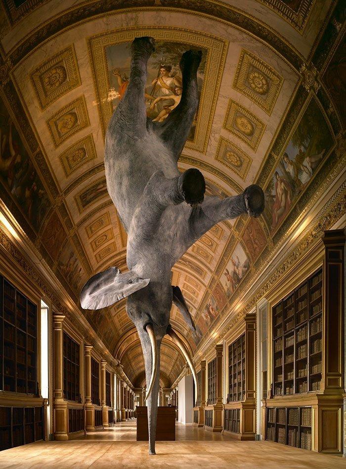Balancing Elephant, Daniel Firman