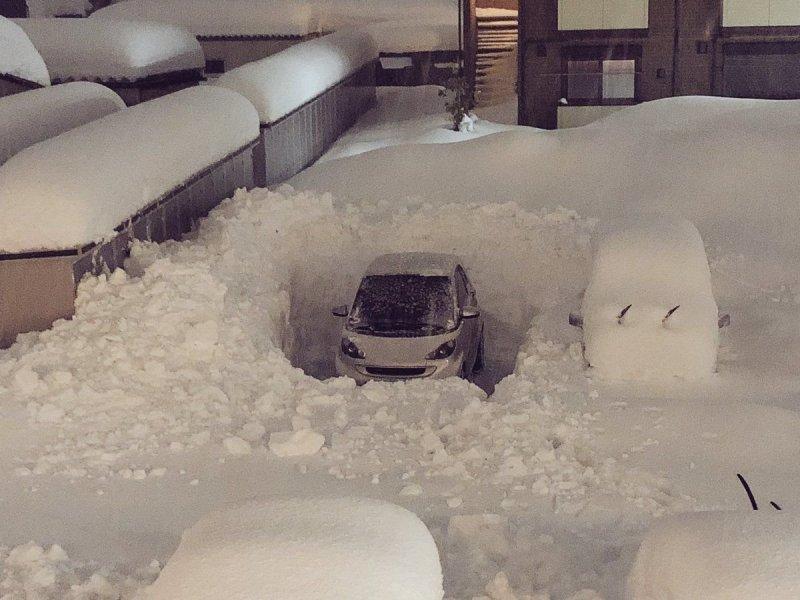 Прикольные картинки машины зимой, цветами поделки