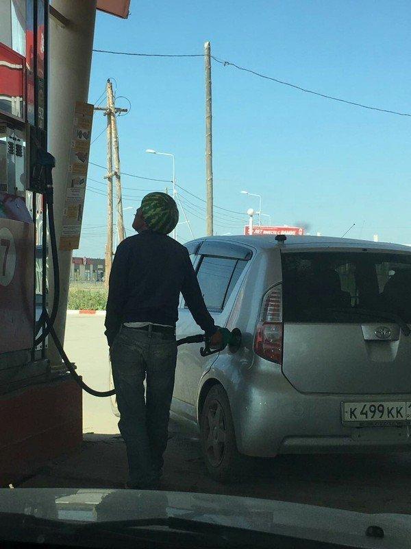 Заправка: ни дня без приколов! за бензином, заправка, очередь за бензином, попало в кадр, прикол, происшествия на заправке, случайности, юмор
