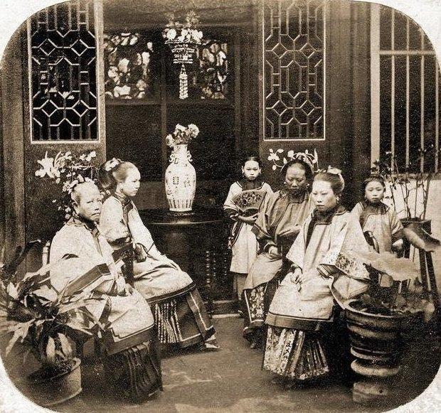 Как на самом деле выглядели девушки из гаремов гарем, девушка, история, наложницы, султан, фото