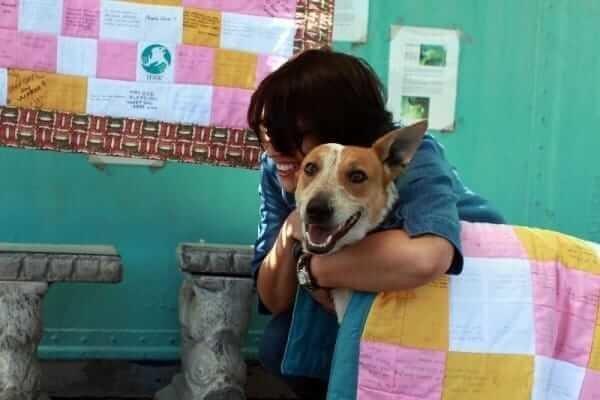 Картинки по запросу Парализованная собака приползла к школе просить о помощи, но директор приказал ее закопать живьем!