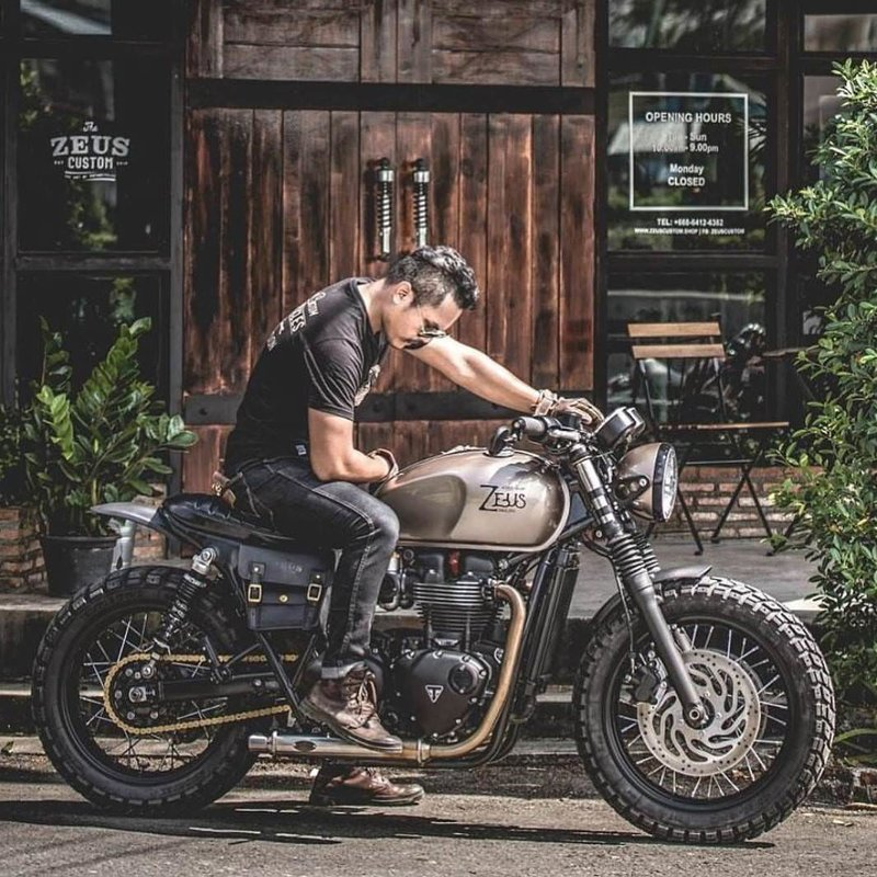 Triumph от фирмы Zeus Customs