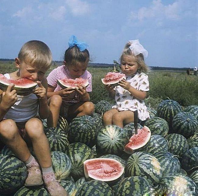 Арбузный горы, синие небеса... СССР, детство, фотографии