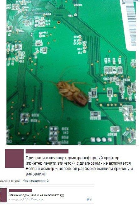 Механик сдох ((( вызывайте дезинсектора, прикол, таракан, тараканы, усатые, фу-у-у-у-у-у, юмор