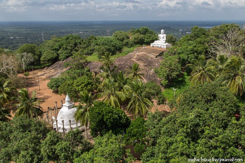 Колыбель буддизма на Шри-Ланке путешествия, факты, фото