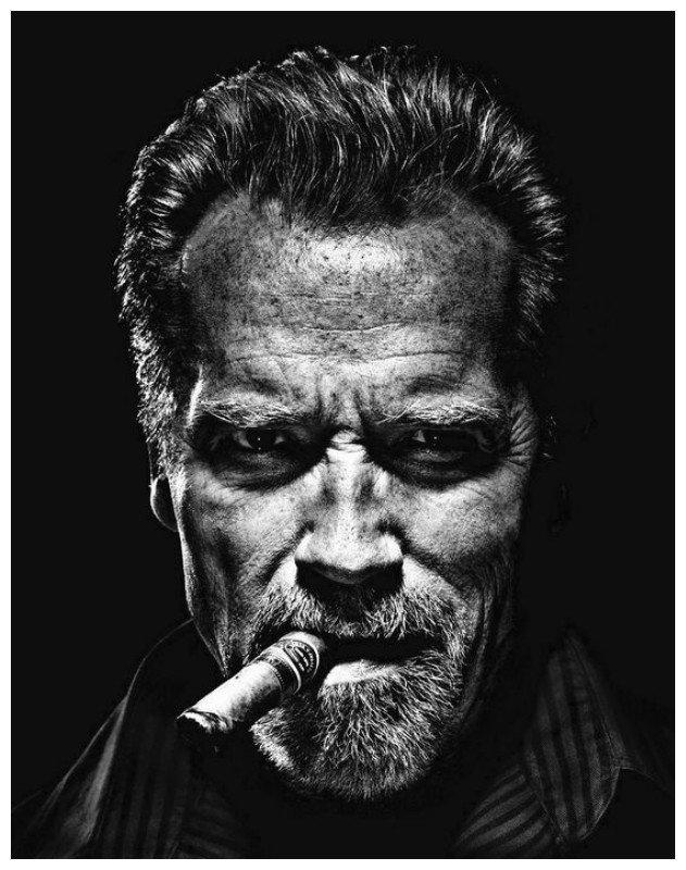 Арнольд Шварценеггер, 1947 год рождения актеры, интересное, искусство, старость, фото