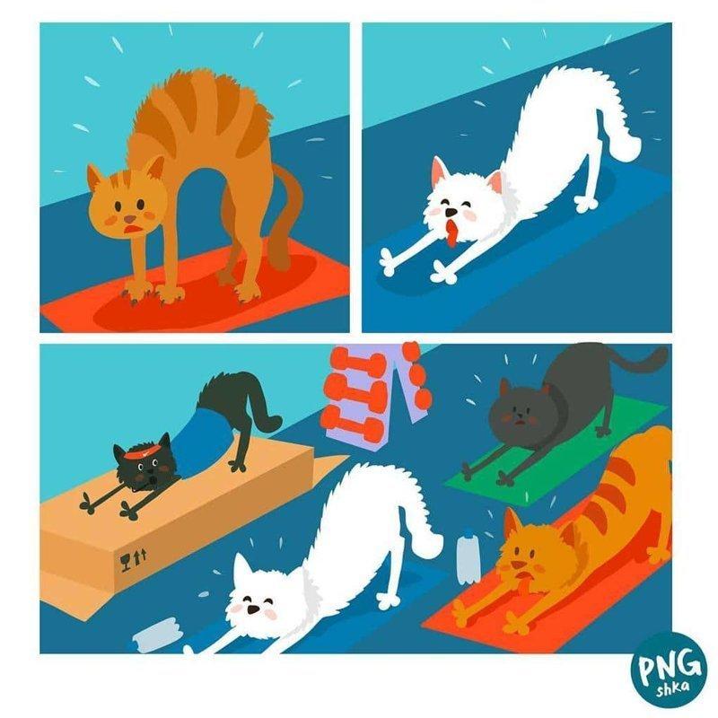 11. Котойога иллюстратор, комиксы, обыденные вещи, рисунок, юмор