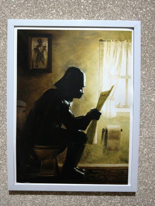 Дарт на туалете день, животные, кадр, люди, мир, снимок, фото, фотоподборка