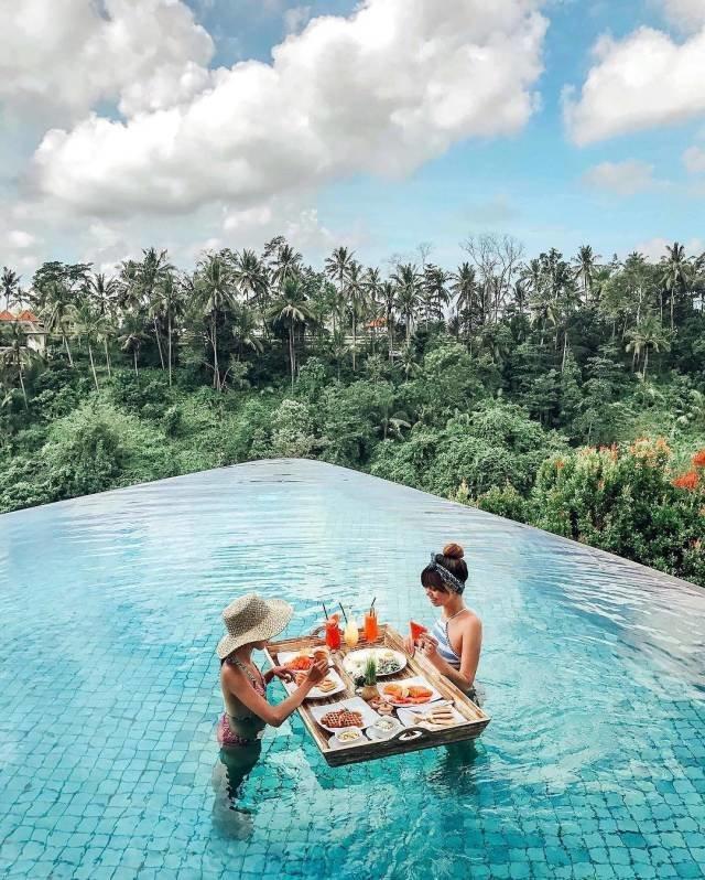 Завтрак в бассейне день, животные, кадр, люди, мир, снимок, фото, фотоподборка