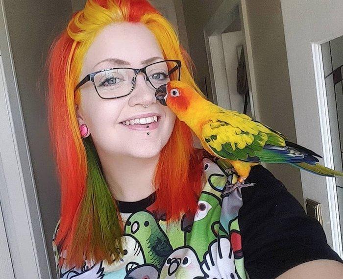 Но когда рядом такой красивый папуг, сразу видно, что чего-то не хватает в мире, волосы, животные, история, люди, попугай, цвет