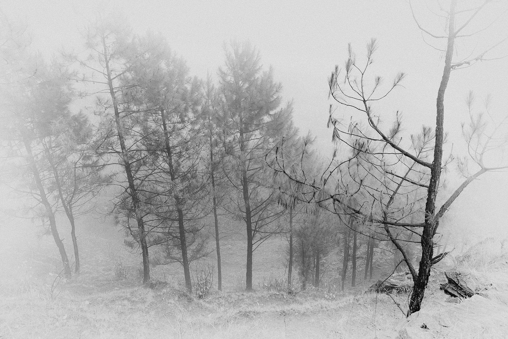 На вершине горы Серро Пан де Асукар, Колумбия. Фотограф - Бернардо Хернандес Sony World Photography, Sony World Photography Awards 2018, лауреаты, лучшие фото, лучшие фотографии, победители, победители конкурса, фотоконкурс