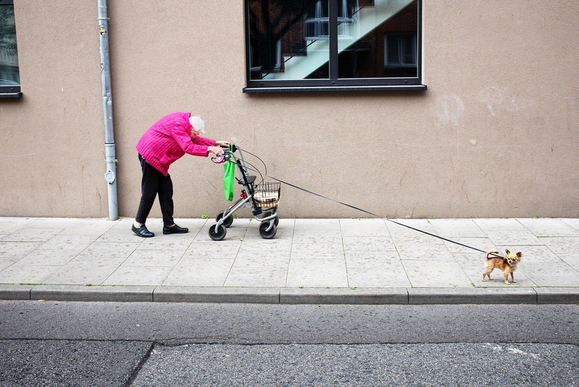 Пожилая дама с собачкой. Фотограф - Мануэль Арменис Sony World Photography, Sony World Photography Awards 2018, лауреаты, лучшие фото, лучшие фотографии, победители, победители конкурса, фотоконкурс