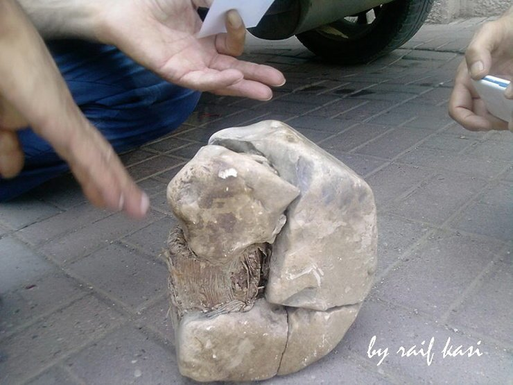 В Косово нашли трансформатор возрастом 20 тысяч лет мистика, наука, технологии