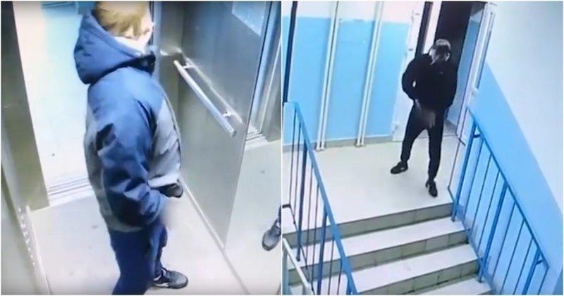 Урайский детектив: жители дома вычисли хулигана, справлявшего малую нужду в лифте Урай, ХМАО, быдло, видео, лифт, наказание, россия
