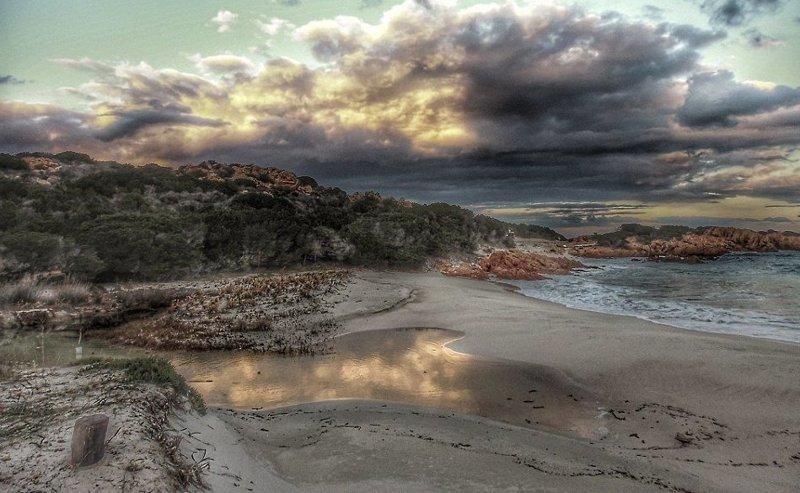 Мауро мечтает прожить на острове всю оставшуюся жизнь  Буделли, Моранди, жизнь, италия, мир, остров, отшельник, фотография