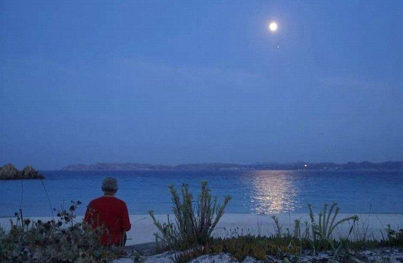В летнее время Мауро Моранди показывает остров туристам  Буделли, Моранди, жизнь, италия, мир, остров, отшельник, фотография