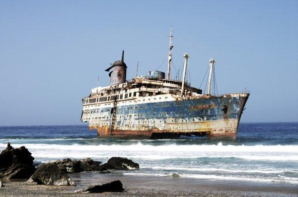 """К берегам Калифорнии прибило странный корабль с полчищами крыс на борту """"Любовь Орлова"""", загадки, исчезнувший экипаж, корабль-призрак, русское судно"""