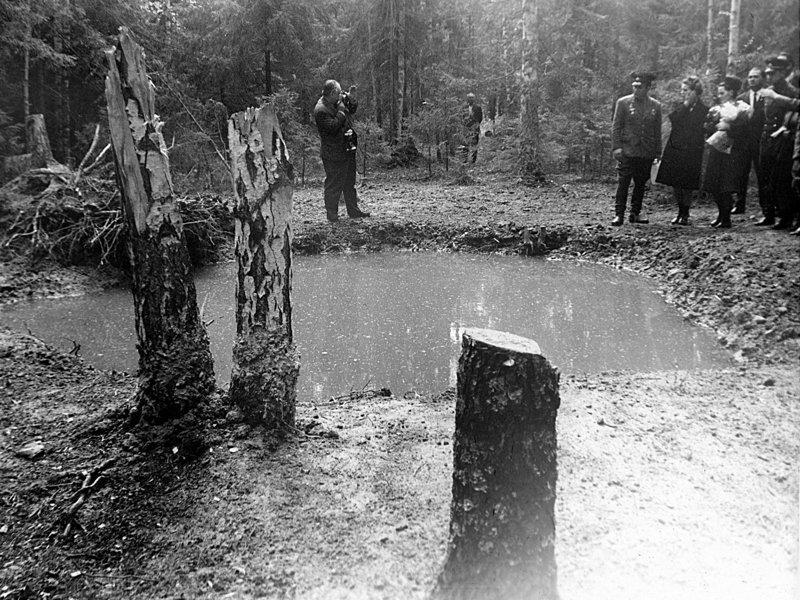 Воронка на месте столкновения самолета с землей 50 лет со дня смерти Гагарина, ynews, гагарин, тайна гибели