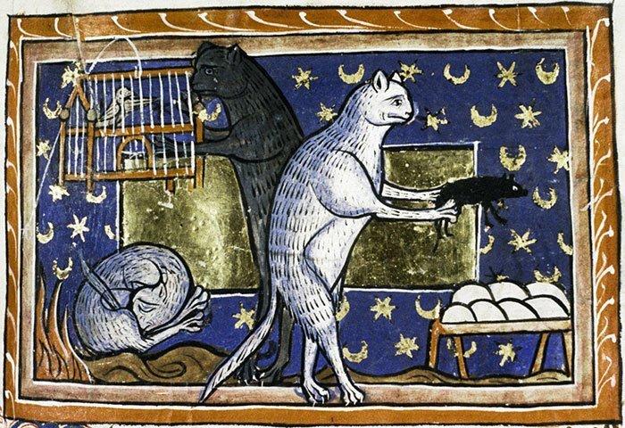 Сценка из повседневной жизни  искусство, картина, кот, кошка, портрет, смех, средневековье, уродство