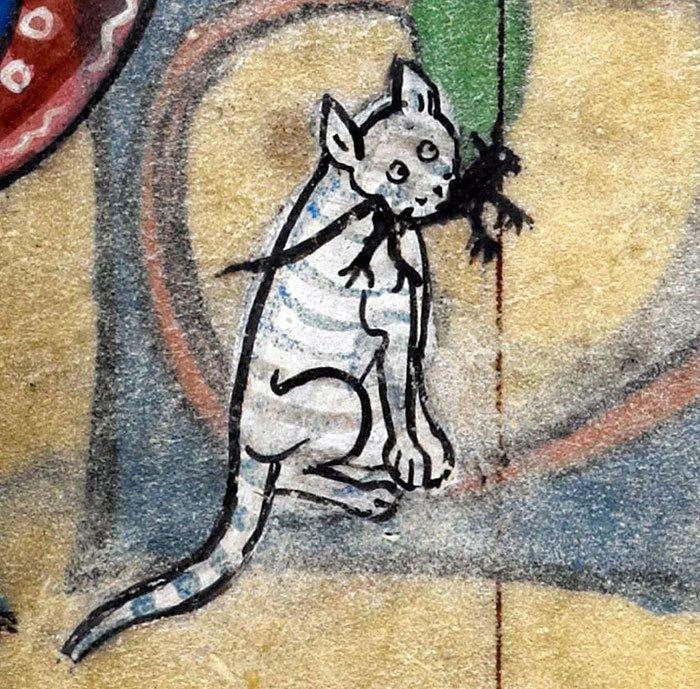 Ящерица притворяется кошкой?  искусство, картина, кот, кошка, портрет, смех, средневековье, уродство