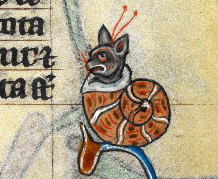Котулитка  искусство, картина, кот, кошка, портрет, смех, средневековье, уродство
