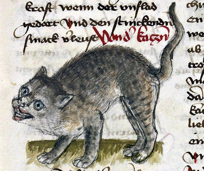 Создание из ночных кошмаров  искусство, картина, кот, кошка, портрет, смех, средневековье, уродство