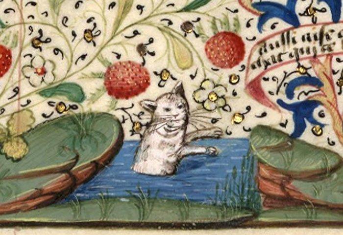 Водные процедуры  искусство, картина, кот, кошка, портрет, смех, средневековье, уродство