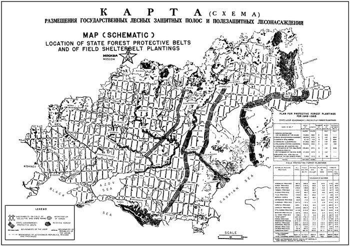 Защитные лесополосы юга России Лесополосы, история, факты