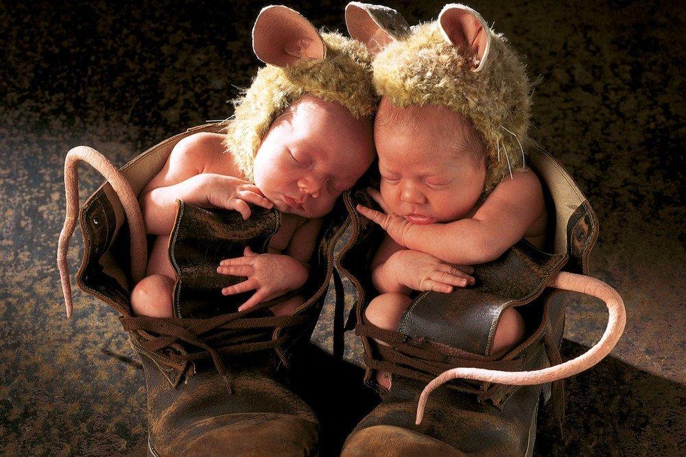 Открытки близнецам мужчинам, картинках няша картинки