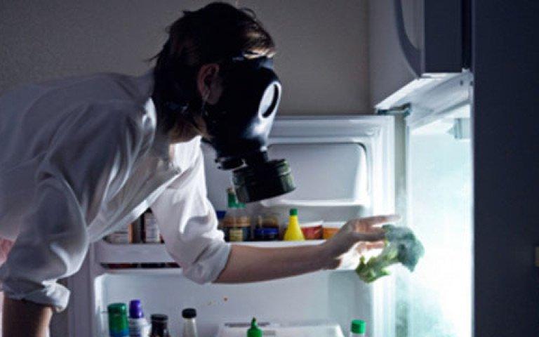 Чистый холодильник еда, овощи и фрукты, продукты, советы, храним правильно